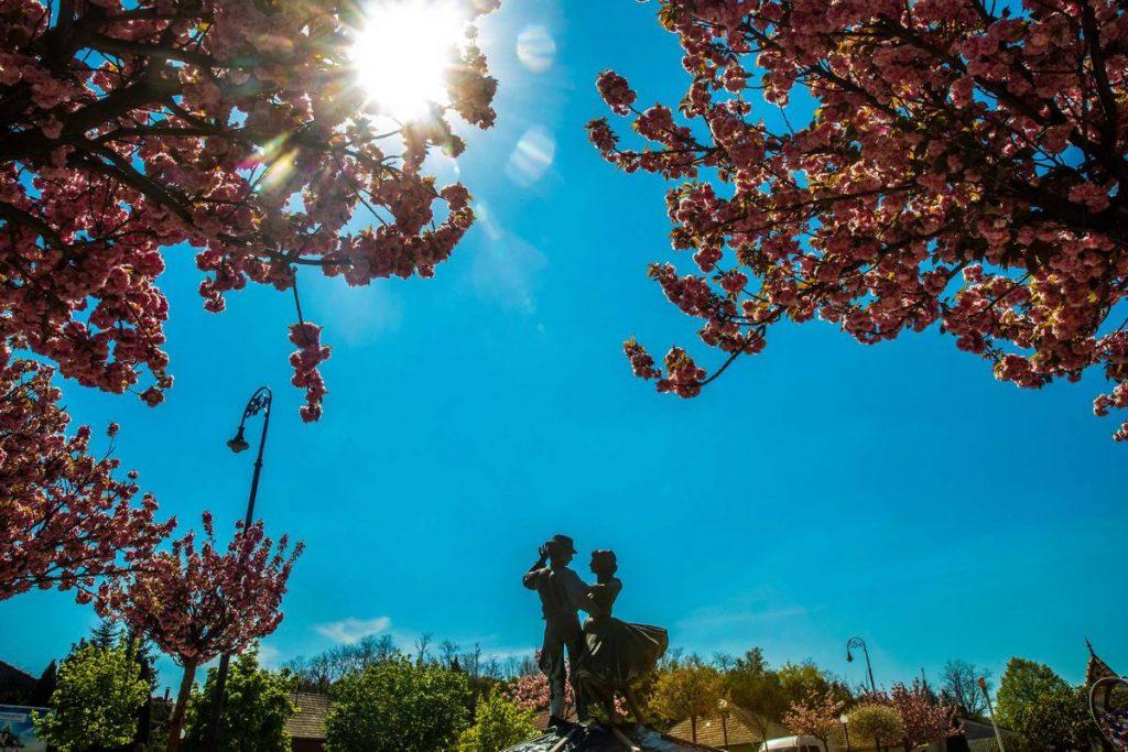 Csodálatos látvány a virágba borult főtér