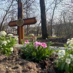 Tavaszi díszbe öltözött a Cserhalmi család sírja