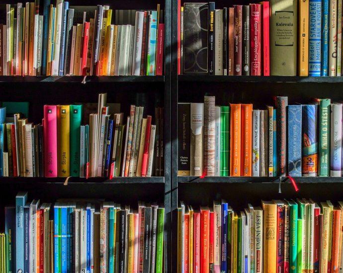 Mától nyit a könyvtár: ezek a belépés feltételei