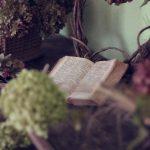Rejtélyes könyvek
